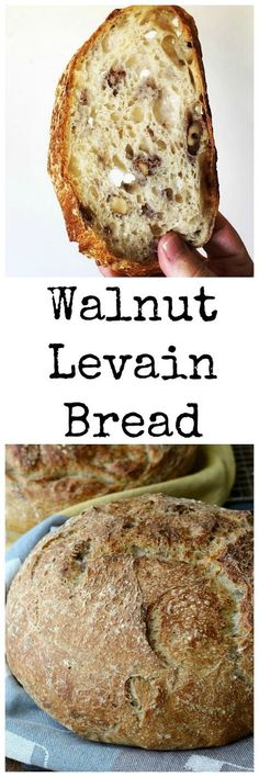 This Walnut Levain Bread is such a pleasure to make, and even more fun to eat. The crust is chewy, and the crumb is soft and airy, and loaded with toasted walnuts. Yeast Bread, Sourdough Bread, Bread Baking, Bread Machine Recipes, Bread Recipes, Baking Recipes, Pizza Recipes, Pain Bagel, Artisan Bread