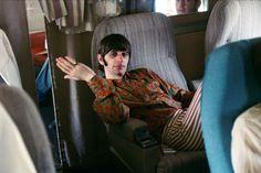 Ringo in flight