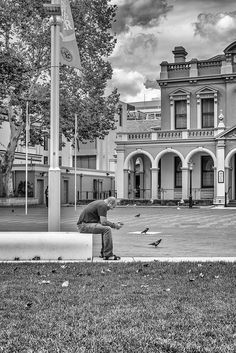Happy Chatter Shares the City Square with the Birds Sydney Australia April 2015