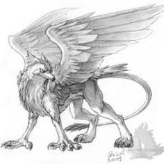 Awesome gryphon drawing