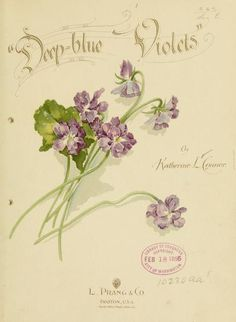 """""""Deep-blue violets"""" (Poetry) by Katherine L. Connor, published in 1896 by L. Prang & Co. in Boston - Title page Vintage Labels, Vintage Cards, Vintage Postcards, Vintage Images, Vintage Flowers, Vintage Floral, Edith Holden, Raindrops And Roses, Sweet Violets"""