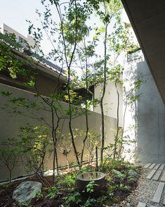 元浅草の家7 Asian Garden, Japanese Garden Style, Landscape Design, Garden Design, Indoor Courtyard, Architecture Courtyard, Vertical Garden Wall, Small Courtyards, Planting Plan