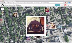 "I Know Where Your Cat Lives. ""I Know Where Your Cat Lives"" http://iknowwhereyourcatlives.com is a data experiment that visualizes a sample o..."