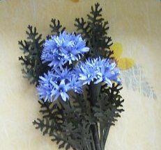 Blue Judys