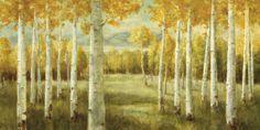 Aspen Birches - Fototapeten & Tapeten - Photowall