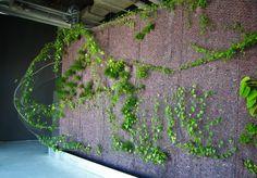 Exposition Airs de Paris, Centre Beaubourg | Vertical Garden Patrick Blanc