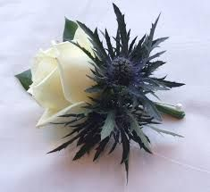 Blue Wedding Flowers I think the classiest boquet look would be to do basically a small white rose bouquet and then build around it a circle or two of thistles. Then wrap it in tartan and put the brooch center on the stems. Thistle Wedding, Ivory Wedding Flowers, Flower Bouquet Wedding, Floral Wedding, Trendy Wedding, Wedding Ideas, Gypsophila Wedding, Purple Wedding, Bouquet Bleu