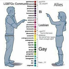 Gender spectrum Sexual Orientation spectrum. There is a difference between how allies view it and how people in the community do. One of my friends didn't even know what the B in LGBT stood for! #BiErasure