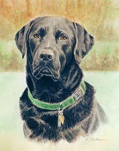 Black Labrador Retriever Dog Art Print, Black Lab Art from Watercolor by P. Tarlow