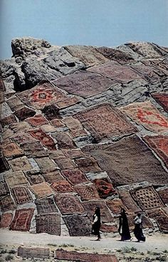 Persian carpets laid out to dry in the traditional way. Persian carpets are still cleaned by hand washing, except they have flat drying racks on which the carpets are laid, inside.