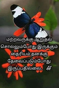 Yes that true in my life. Tamil Motivational Quotes, Tamil Love Quotes, Inspirational Quotes, Sad Life Quotes, Hurt Quotes, Photo Quotes, Picture Quotes, Positive Motivation, Positive Quotes