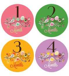 Lucy Darling Shop Monthly Bodysuit Baby Sticker - Baby Girl - Branch - Month 1-12 Lucy Darling http://www.amazon.com/dp/B00B40QJ14/ref=cm_sw_r_pi_dp_gbxsub0N1TS6J