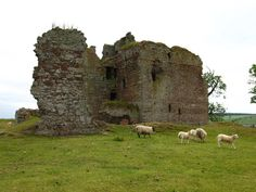 Cessford Castle is a ruined L-plan castle near the village of Cessford, equidistant between the Royal Burgh of Jedburgh, and the Burghs of Kelso and Kirk Yetholm, in the historic county of Roxburghshire, now a division of the Scottish Borders. The Castle is caput of the Barony of Cessford, and the principal stronghold of the Kers/Kerrs, notorious Border Reivers, many of whom served as Wardens of the Middle March. Wikipedia