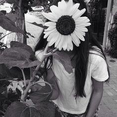 Your my sunflower.