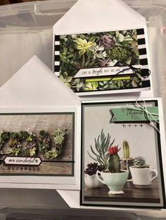 february 2019 paper pumpkin Pumpkin Cards, Paper Pumpkin, Stampin Up, February, Home Decor, Stamping Up, Interior Design, Home Interior Design, Home Decoration