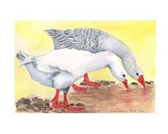 Original goose Watercolour geese Painting farmyard  by LunaRosaArt, £30.00