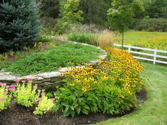 I love the addition of a bed of sedum and Rudbeckia 'Goldsturm Black-Eyed Susan' in front of the dry stack stone bedding area. (Burlington Retreat - Traditional - Landscape - Burlington - Linden L.A.N.D. Group)