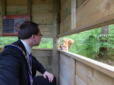 Click out the new Red Squirrel Safari in Slieve Gullion Forest Park. Hill Walking, Red Squirrel, Forest Park, Geology, Safari, Fun, American Red Squirrel, Mountaineering, Squirrels