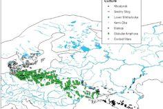 Czy Europa Środkowo-Wschodnia Proto-Indo-European Urheimat? [SPLIT] // mod - Strona 41