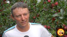 La pomme Ariane vue par ceux qui la font - Stéphane Courbière En septembre dernier, un voyage de presse a été organisé dans les vergers du coteau lyonnais pour fêter les 10 ans de notre belle pomme Ariane ! A cette occasion, les pomiculteurs d'Ariane racontent ce qu'ils aiment le plus chez leur pomme préférée.