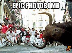 Photobomb level: running of the bulls…