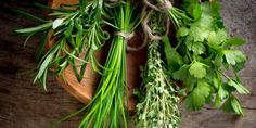 Deset druhů bylin, které byste si měli vypěstovat
