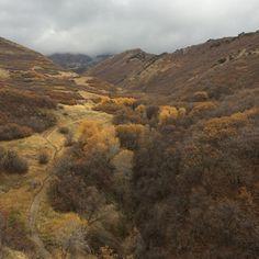 Solo Autumn Hike