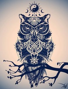 looveitorleaveit: #owl #yinyang #beautiful