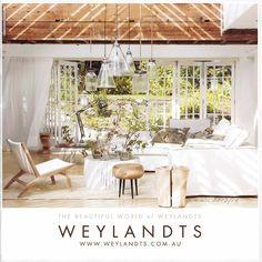 weylandts