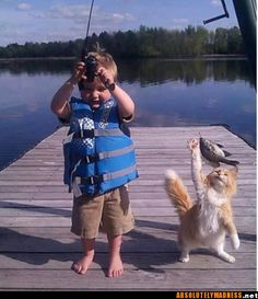 Fun Claw - Funny Cats, Funny Dogs, Funny Animals: Funny Animal Pictures With Captions - 35 Pics I Love Cats, Crazy Cats, Animal Pictures, Cute Pictures, Random Pictures, Smile Pictures, Funny Animals, Cute Animals, Funniest Animals