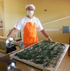 Spirulina extrusada, posta na bandeja em forma de spaghetti, pronta para a fase de secagem.