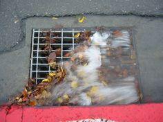 Rain Gutter Cleaning in San Diego Rain Gutter Cleaning, Painting, Painting Art, Paintings, Painted Canvas, Drawings