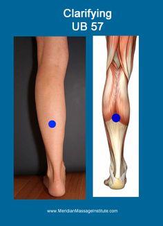 UB 57  #meridianmassage #acupressure #TCM http://infinityflexibility.com/wp/