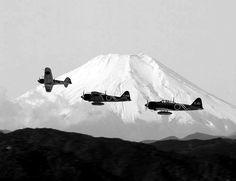Timeline Photos - Japan Specialist