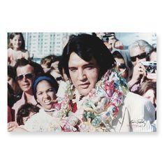 Pôster Elvis - Hawaiian Necklace