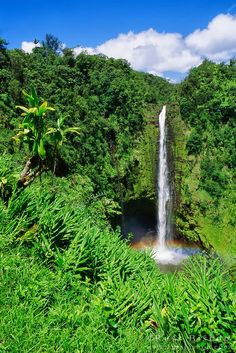 ʻAkaka Falls State Park is a state park on Hawaiʻi Island, in the US state of Hawaii.
