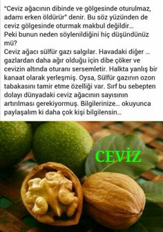 Neşe'nin gözdeleri Health And Beauty, Healthy Life, Health Tips, Detox, Health Fitness, Fruit, Vegetables, Food, Natural