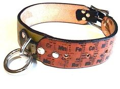 Periodic table dog collar! Dogs and chemistry! My favorite things