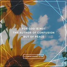 For God is not the author of confusion but of peace. (1 Corinthians 14:33)