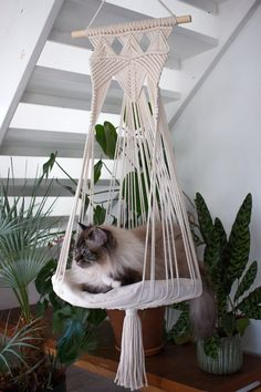 macrame plant hanger+macrame+macrame wall hanging+macrame patterns+macrame projects+macrame diy+macrame knots+macrame plant hanger diy+TWOME I Macrame & Natural Dyer Maker & Educator+MangoAndMore macrame studio Hammock Diy, Hammock Swing, Big Pillows, Cat Room, Macrame Design, Macrame Projects, Pet Safe, Macrame Patterns, Planters
