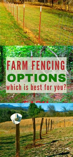 The Ultimate Guide to Your Farm Fencing Options Fencing is a never ending job on the farm. Get all the information you need on all the farm fencing options so you can choose the best option for your homestead! Homestead Farm, Homestead Survival, Survival Skills, Homestead Living, Permaculture, Fence Options, Farm Layout, Farm Fence, Pasture Fencing