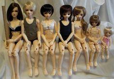 Size comparison of Volks brand dolls