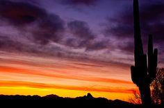 Desert Sunrise 5
