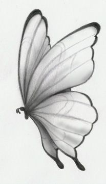 Rose Drawing Discover butterfly by Danadinho on DeviantArt Pencil Drawings Of Nature, Pencil Drawings For Beginners, Easy Pencil Drawings, Pencil Sketch Drawing, Art Drawings Sketches Simple, Girly Drawings, Drawings Of Butterflies, Pencil Sketches Of Flowers, Easy Sketches To Draw