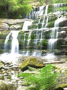 Liffey Falls in Tasmania, Australia