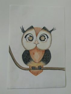 Owl Colour Pencil Drawing