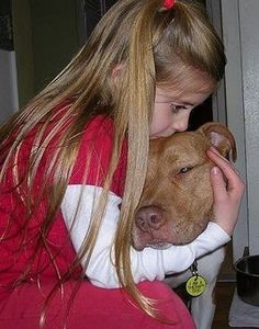 Bean, the Therapy Pit Bull! pit-bulls-and-kittens Pit Bulls, Dogs And Kids, Animals For Kids, I Love Dogs, Animals Dog, Nanny Dog, Bully Dog, Dog Rules, Pit Bull Love