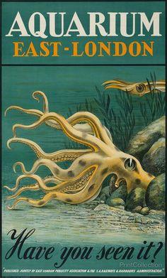 Vintage Travel Poster - East-London - Aquarium - Octopus amongst rocks and seaweed -  by  H. Haüsaman, 1939.