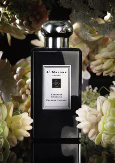 Jo Malone Tuberose Angelica The queen of white florals. Sensual. Touched with the green spiciness of angelica. Sumptuous on the warmth of amberwood. Intoxicating and desirable.