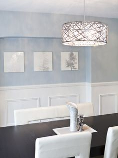 Contemporary Dining Room Wainscoting Design, Pictures, Remodel, Decor and Ideas - page 7